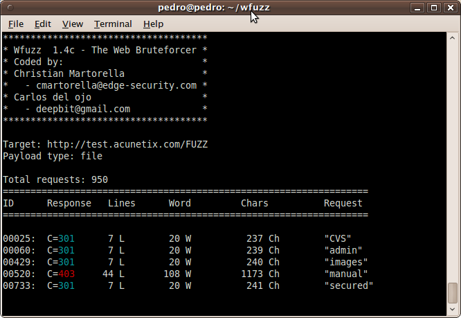 New version of Wfuzz! | Pentura Labs's Blog